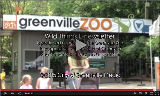 Click to view the June zoo enewsletter on YouTube
