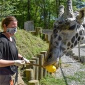 Christine with giraffe