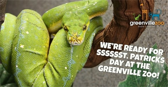 Greenville Zoo March Newsletter