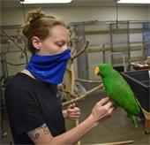 Meet the Zookeeper