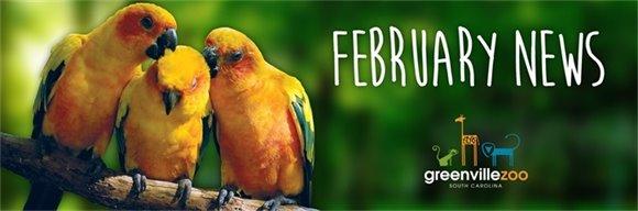 February Zoo News