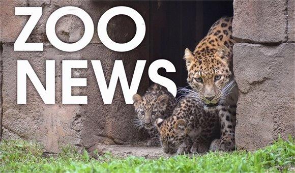 Zoo News May 18
