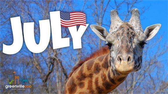 July Zoo News