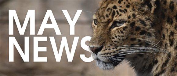Zoo News May 8
