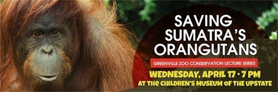 Saving Sumatra's Orangutans