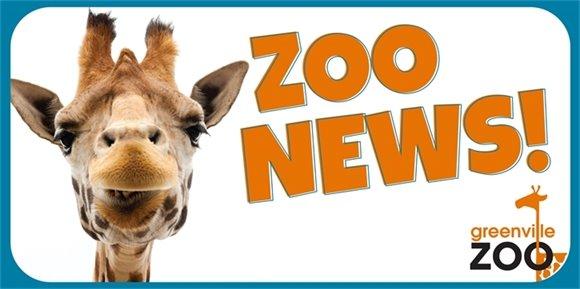Zoo News September 18