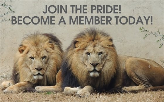 Become a Greenville Zoo Member!