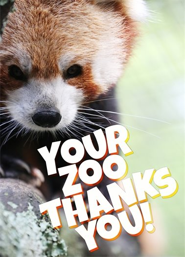 Your Zoo Thanks You