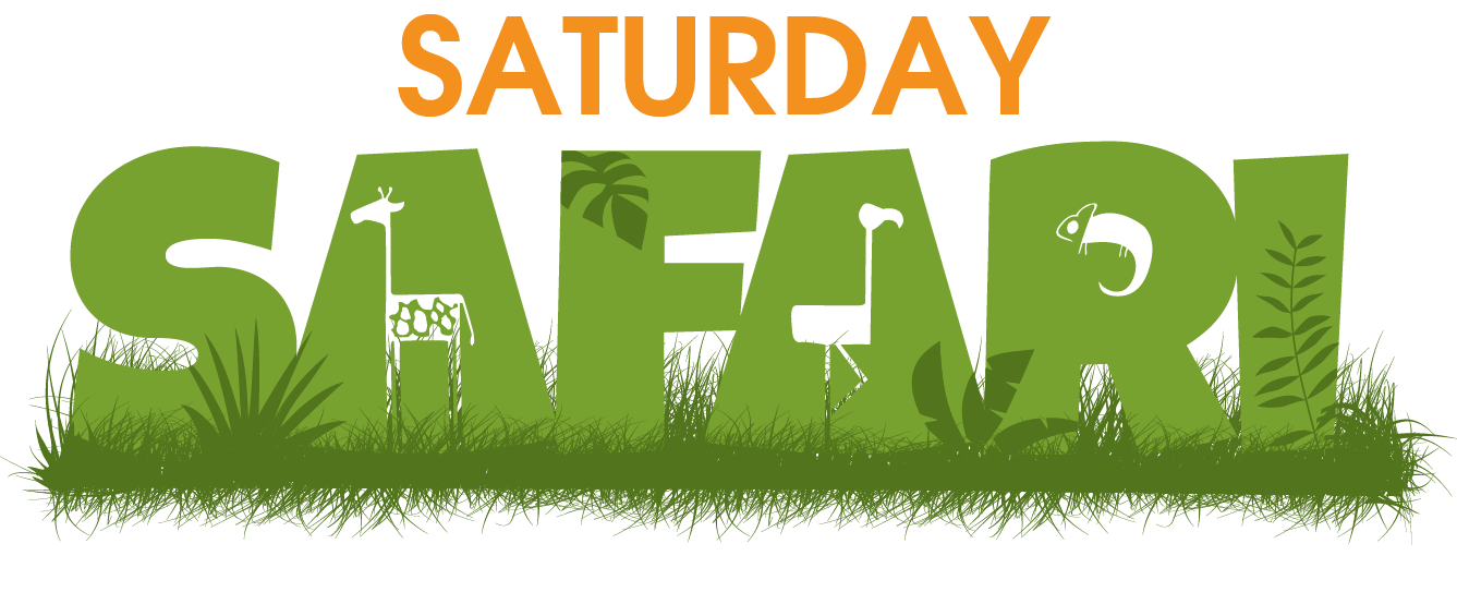 Saturday Safari Logo