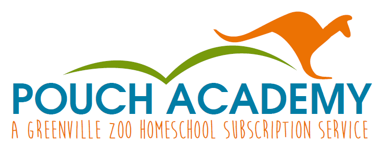 Pouch Academy