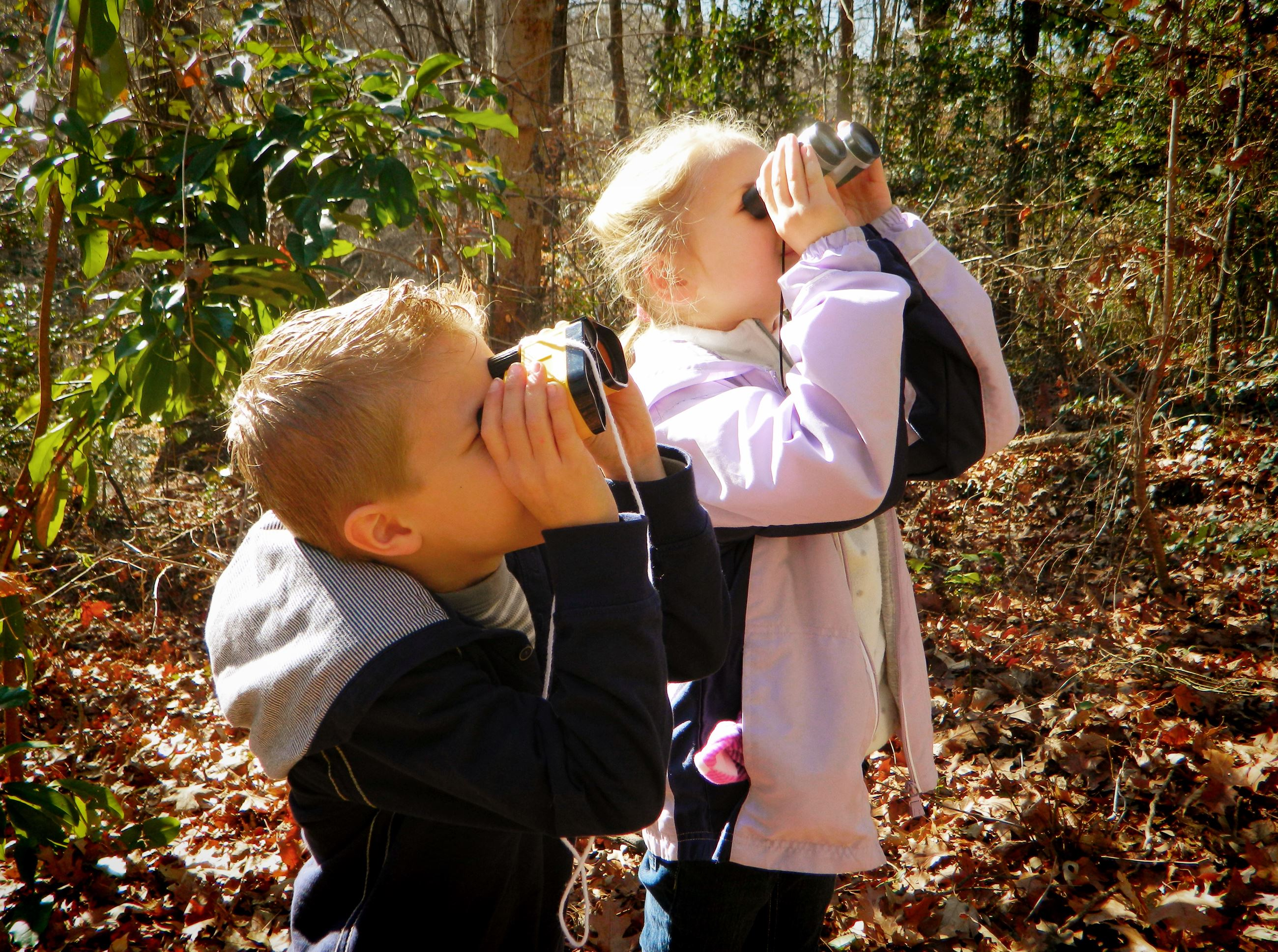 Kids Looking Through Binoculars in the Woods