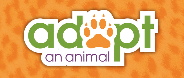 Adopt an Animal at the Greenville Zoo!